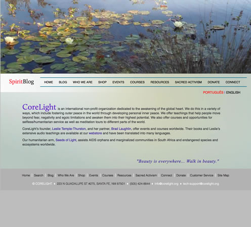 Customized WordPress Website Designs