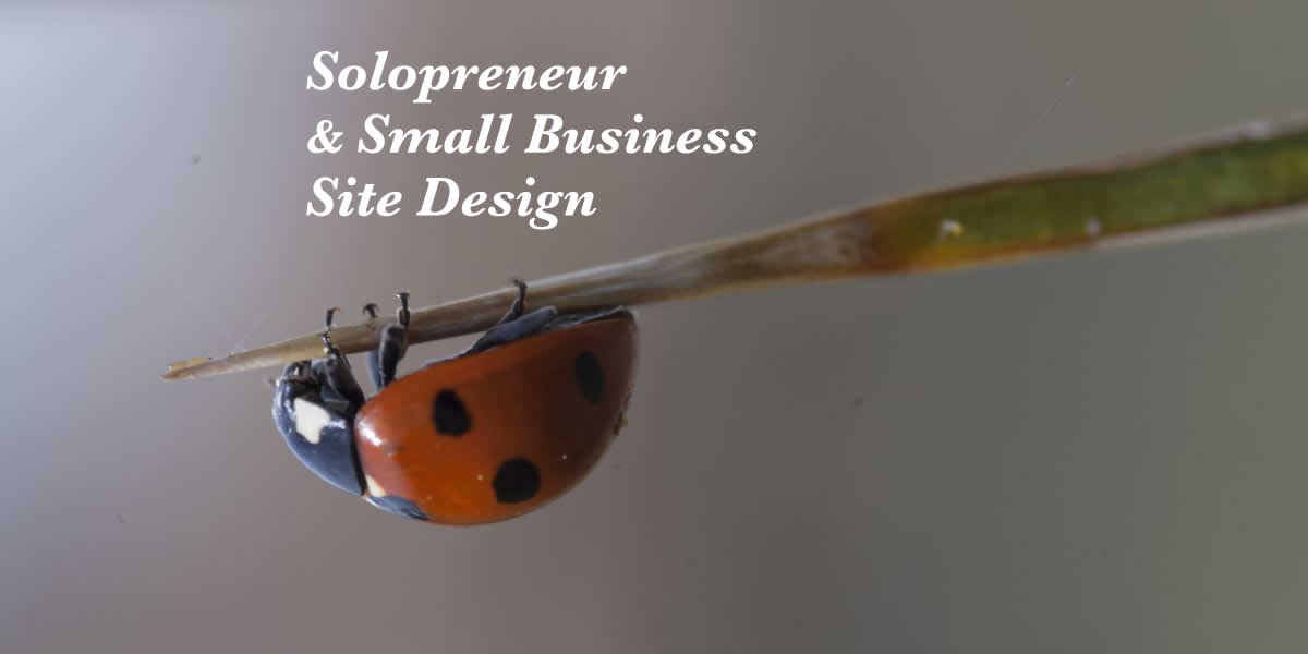 Customized website design—solopreneur & small business