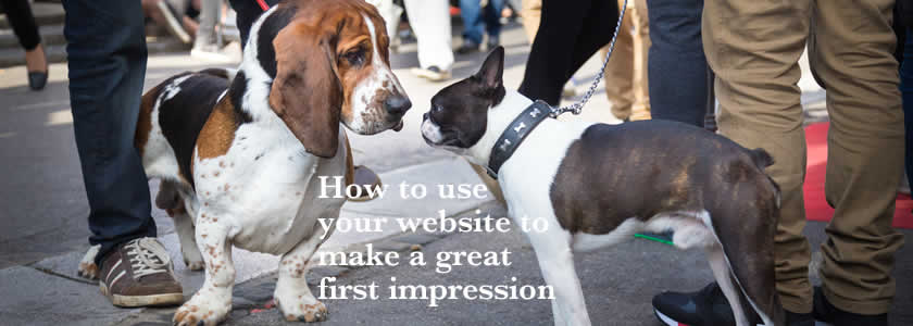 """How to Make your Sustainable Website Design your """"Ideal Business Partner"""""""
