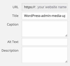 WordPress admin insert media file upload blank